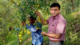 হেমন্তের বাতাসে কমলার সুঘ্রাণ